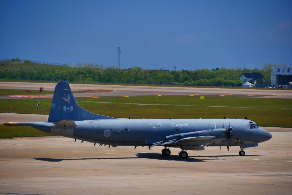 T.Sazenさんのカナダ軍 Lockheed P-3 Orion (140113) 航空フォト