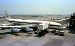 kamerajiijiさんが、羽田空港で撮影した日本航空 DC-8-62Hの航空フォト(写真)