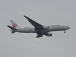 わたくんさんが、福岡空港で撮影した日本航空 777-246/ERの航空フォト(写真)