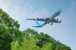 パンダさんが、成田国際空港で撮影したエア・タヒチ・ヌイ A340-313Xの航空フォト(写真)