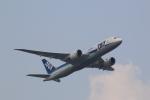 ほっくんさんが、羽田空港で撮影した全日空 787-8 Dreamlinerの航空フォト(写真)