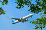 パンダさんが、成田国際空港で撮影したガルーダ・インドネシア航空 777-3U3/ERの航空フォト(写真)