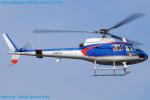 Chofu Spotter Ariaさんが、東京ヘリポートで撮影したアカギヘリコプター AS350B1 Ecureuilの航空フォト(飛行機 写真・画像)