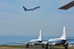 パンダさんが、米子空港で撮影したスカイマーク 737-86Nの航空フォト(飛行機 写真・画像)