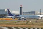 さくらの城南山。さんが、成田国際空港で撮影したタイ国際航空 A340-642の航空フォト(写真)