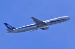 TOY2011さんが、羽田空港で撮影した全日空 777-381の航空フォト(写真)