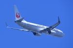 TOY2011さんが、羽田空港で撮影した日本航空 737-846の航空フォト(写真)