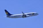 TOY2011さんが、羽田空港で撮影したスカイマーク 737-8ALの航空フォト(写真)