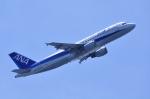 TOY2011さんが、羽田空港で撮影した全日空 A320-211の航空フォト(写真)