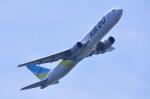 TOY2011さんが、羽田空港で撮影したAIR DO 767-381の航空フォト(写真)