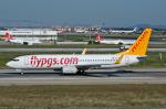 Tomo-Papaさんが、アタテュルク国際空港で撮影したペガサス・エアラインズ 737-83Nの航空フォト(写真)