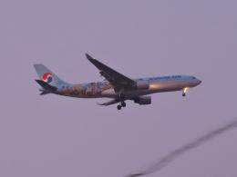 わたくんさんが、福岡空港で撮影した大韓航空 A330-223の航空フォト(写真)