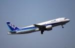 ax0110さんが、成田国際空港で撮影した全日空 A320-214の航空フォト(写真)