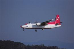 kumagorouさんが、福岡空港で撮影した中日本エアラインサービス 50の航空フォト(写真)