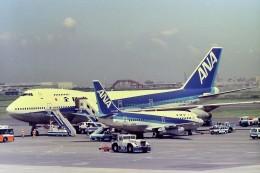 その他の流動資産さんが、羽田空港で撮影した全日空 737-281/Advの航空フォト(飛行機 写真・画像)