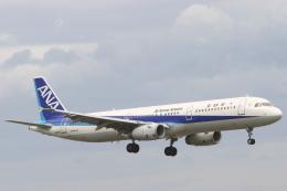 安芸あすかさんが、福岡空港で撮影した全日空 A321-131の航空フォト(飛行機 写真・画像)