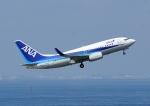 じーく。さんが、羽田空港で撮影した全日空 737-781の航空フォト(写真)