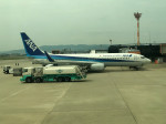 tsubasa0624さんが、伊丹空港で撮影した全日空 737-881の航空フォト(写真)