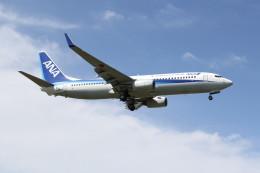 utarou on NRTさんが、成田国際空港で撮影した全日空 737-881の航空フォト(飛行機 写真・画像)
