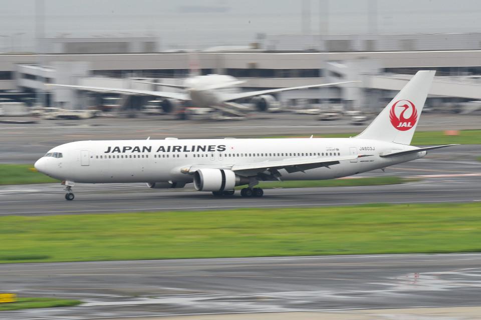 tsubasa0624さんの日本航空 Boeing 767-300 (JA603J) 航空フォト