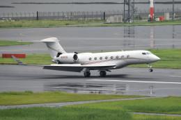 tsubasa0624さんが、羽田空港で撮影したアメリカ個人所有 G500/G550 (G-V)の航空フォト(飛行機 写真・画像)