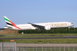 航空フォト:A6-ECW エミレーツ航空 777-300