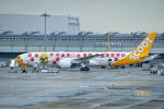 c59さんが、関西国際空港で撮影したスクート (〜2017) 787-9の航空フォト(写真)