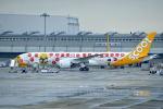 c59さんが、関西国際空港で撮影したスクート (〜2017) 787-9の航空フォト(飛行機 写真・画像)