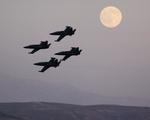 LAX Spotterさんが、ミラマー海兵隊航空ステーション で撮影したPatriots Teamの航空フォト(写真)