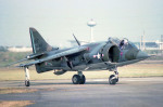 apphgさんが、入間飛行場で撮影したアメリカ海兵隊 AV-8A Harrierの航空フォト(写真)