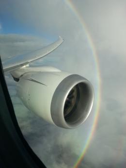 JA8039 TSUKUBAさんが、鹿児島県大隅半島上空で撮影した日本航空 787-8 Dreamlinerの航空フォト(写真)