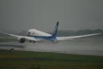 kix-itmさんが、伊丹空港で撮影した全日空 787-8 Dreamlinerの航空フォト(飛行機 写真・画像)