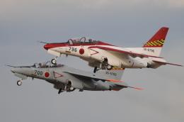 はみんぐばーどさんが、浜松基地で撮影した航空自衛隊 T-4の航空フォト(写真)