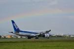 アップルさんが、松山空港で撮影した全日空 787-8 Dreamlinerの航空フォト(写真)