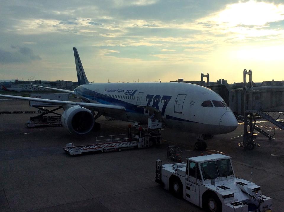 tsubasa0624さんの全日空 Boeing 787-8 Dreamliner (JA817A) 航空フォト