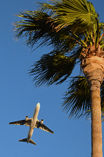 佐治足康(Emty300改め)さんが、伊丹空港で撮影した日本航空 767-346/ERの航空フォト(飛行機 写真・画像)