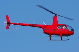PASSENGERさんが、東京ヘリポートで撮影した日本個人所有 R44 IIの航空フォト(飛行機 写真・画像)