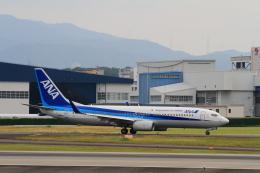 玄米茶さんが、伊丹空港で撮影した全日空 737-881の航空フォト(飛行機 写真・画像)