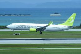 tsubasa0624さんが、那覇空港で撮影したソラシド エア 737-81Dの航空フォト(写真)