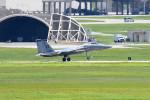 tsubasa0624さんが、嘉手納飛行場で撮影したアメリカ空軍 F-15 Eagleの航空フォト(写真)