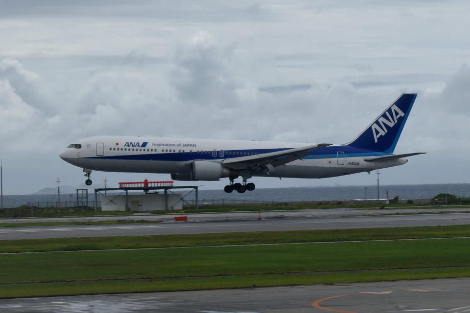 tsubasa0624さんの全日空 Boeing 767-300 (JA602A) 航空フォト