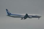 りゅうさんさんが、千歳基地で撮影した全日空 777-381の航空フォト(写真)