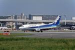 Gambardierさんが、伊丹空港で撮影したエアーニッポン 737-54Kの航空フォト(写真)
