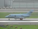 わたくんさんが、福岡空港で撮影した航空自衛隊 U-125A(Hawker 800)の航空フォト(写真)
