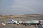 Airfly-Superexpressさんが、宮崎空港で撮影したANAウイングス 737-5L9の航空フォト(写真)