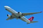 パンダさんが、成田国際空港で撮影したターキッシュ・エアラインズ A330-203の航空フォト(写真)