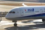 Airfly-Superexpressさんが、広島空港で撮影した全日空 787-9の航空フォト(写真)