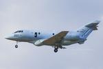 Scotchさんが、小松空港で撮影した航空自衛隊 U-125A(Hawker 800)の航空フォト(写真)