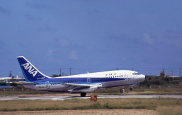 kumagorouさんが、石垣空港で撮影した全日空 737-281/Advの航空フォト(飛行機 写真・画像)