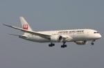 えんどうまめさんが、関西国際空港で撮影した日本航空 787-8 Dreamlinerの航空フォト(写真)